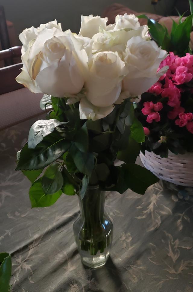 White Roses from Matt and Jessica